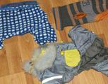 Одежда для мини собаки
