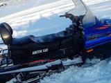 Arctic Cat 550 WT Bearcat